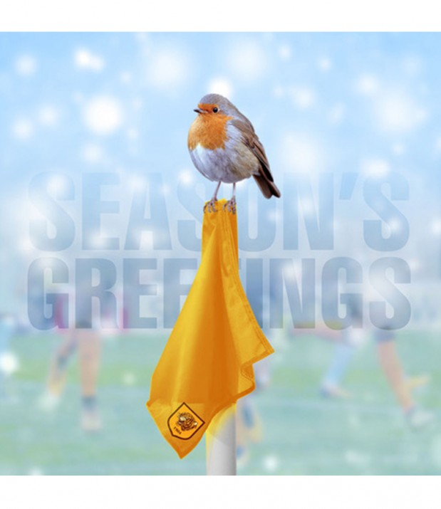 Corner Robin Christmas Card